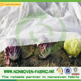 Non-Woven Fabricの紫外線Resistance Agriculture