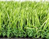정원 훈장을%s 합성 잔디