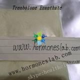 内生男性ホルモンの生産を抑制するParabolanのたくわえ細いTrenbolone Enanthate