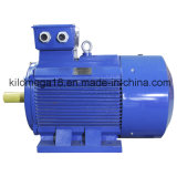 Exporting를 위한 Y Series Electrical Motor