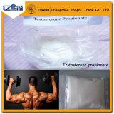 Muskel, der Steroid Hormon-Puder-Testosteron-Azetat-Prüfungs-As aufbaut