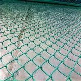 Cerca galvanizada cubierta PVC de la conexión de cadena