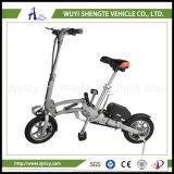 Newable電気スクーターの卸売人の運送者の高速