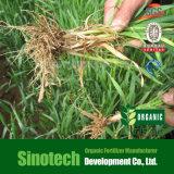 Acido di Fulvic del fertilizzante organico da Leonardite eccellente