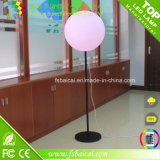 LED Standing Ball Light met Bracket