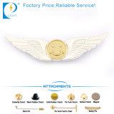 La plata modificada para requisitos particulares de la insignia acabó la escritura de la etiqueta de la divisa del metal (JN-0037)