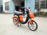 350W方法ブラシレス電気バイク(SPS-014)