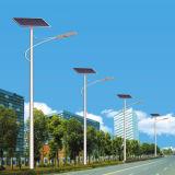 In hohem Grade - empfohlenes Straßenlaternedes Sonnenkollektor-LED (JS-A20156130)