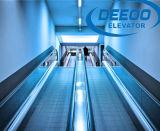 Supermercado Using caminhadas moventes da velocidade 0.5m/S