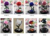 Pequeño príncipe, flores ideales de la seda de la decoración de la Navidad de S