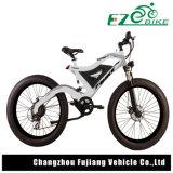 Elektrisches Fahrrad, Gebirgselektrisches Fahrrad, e-Fahrrad