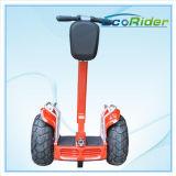 2人のお偉方のスクーターE8が付いているスマートな電気スクーターのバランスをとっている自己