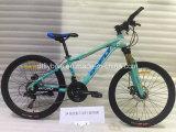24inch合金フレームMTBのバイク