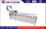 Machine à laver de légume fruit, rouleaux à haute pression de balai de jet d'eau