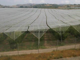 Плетение окликом HDPE горячей поставкы фабрики сбывания UV стабилизированное пластичное анти-