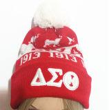 Le chapeau/a tricoté le chapeau de Beanie de chapeau/le chapeau tricoté par laines et folâtre le chapeau/chapeau