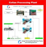 Coltan alluvionale che separa pianta