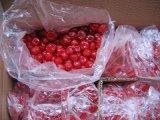 Самое лучшее качество и новым высушенная урожаем вишня