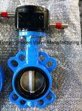 Válvula de borboleta da bolacha do disco EPDM/PTFE do aço inoxidável de ferro de molde