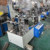 De automatische Machine van de Verpakking van de Rij van de Film voor het Drinken Stro