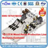 usine chaude de boulette en bois d'essence de biomasse de vente de 10t/H Chine