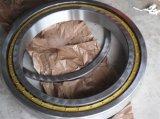 Rodamiento de rodillos cilíndrico especial del rodamiento Nup29/560mc3 con la jaula de cobre amarillo