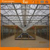 Venloの商業タイプガラスの温室