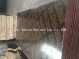 20mm*610*2500 Brown Film Faced Plywood Poplar Core WBP Glue