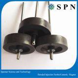 Plastikferrit-geklebter Einspritzung-Magnet für Motoren