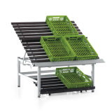 Supermarché Fruit Display Shelf Fruit and Vegetable Rack