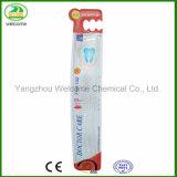 Qualitäts-erwachsene Zahnbürste mit dem Cer genehmigt