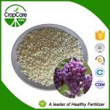 Fertilizante compuesto soluble en agua del 100% NPK