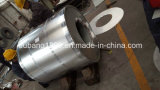 Hauptstahlring der qualitäts0.16-0.8mm PPGI/PPGI/strich Gi-Stahlring vor