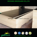 WBP Grade Film Faced Plywood with Two Times Hot Press Quality or One Time Hot Press Quality