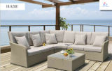 Mobilia di vimini del rattan della mobilia del patio del sofà del rattan della mobilia della ganascia della Tabella della casa della mobilia esterna di vimini popolare del giardino