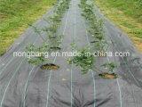 Stuoia dell'erba tessuta pp di controllo di Weed di agricoltura