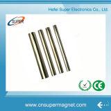 Barra del magnete del motore della qualità superiore (D23.5*100mm)