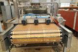 Машина конфеты студня Gd450q с Servo системой