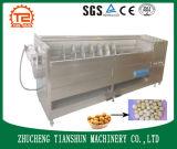 De kleinschalige Automatische Industriële Machine van de Schil van de Aardappel met de Borstel van de Schroef