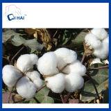 Tovagliolo di bagno bianco del cotone (QH3392)