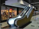 Réseaux d'étape d'escalator (TL133)