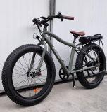 gros vélo de la montagne E du grand pouvoir 1000W
