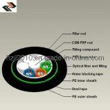 Diriger les câbles de fibre optique enterrés (GYFTY53)