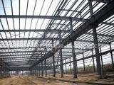 Alto edificio de la estructura de acero de Standarsd (SC-001)
