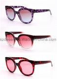جديدة وصول بيع بالجملة سلحفاة يختم لون نظّارات شمس