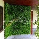 옥외 인공적인 상록 플랜트 벽