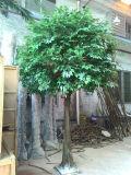 常緑樹12fのホーム装飾のための人工的なバンヤンノキ