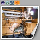 Generatore silenzioso del gas della biomassa della centrale elettrica della biomassa 300kw