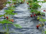 Rolo tecido PP da tela da paisagem do controle de Weed