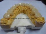 Temporäres Crown&Bridge gebildet Minghao im zahnmedizinischen Labor